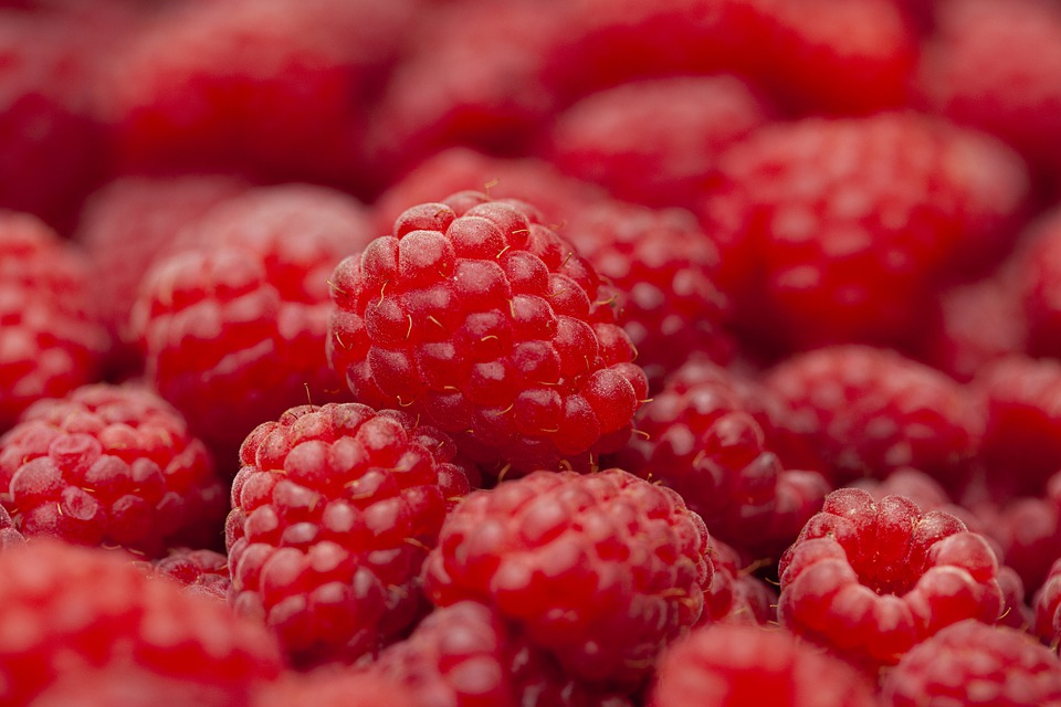 Read more about the article 19 Amazing Salads With Raspberries