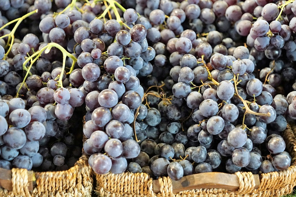 Read more about the article The Very Best Salads With Grapes